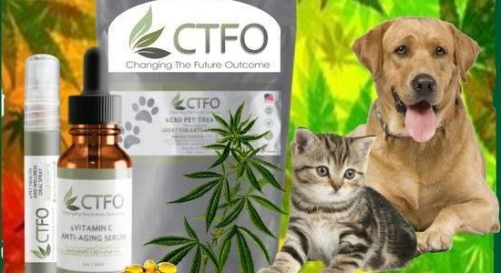 Buy CTFO CBD Pet Products